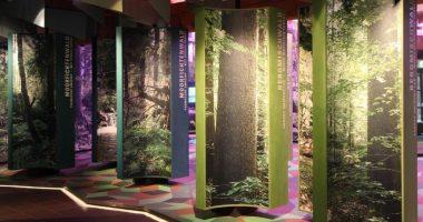 WaldgeschichtlichesMuseumWaldgesellschaften