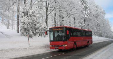 Fahrpläne für die Winterigelbusse 2018/2019