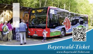 Haltestelle für Igelbus im Nationalpark Bayerischer Wald, Foto: Bayerwald-Ticket
