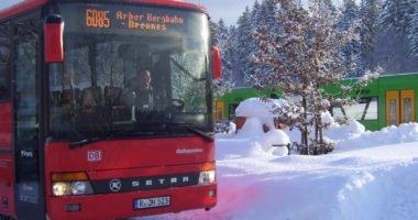 Waldbahn und Skibus am Grenzbahnhof Bayerisch Eisenstein. Foto: Wibmer