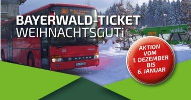 Bayerwald-Ticket WeihnachtsGUTi
