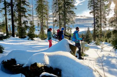 28.12.2018: Schneeschuhtour zum Mittagsplatzl - © Marco Felgenhauer / Woidlife Photography