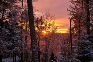 Winter_Hennenkobel (6) ©Touristinfo Bodenmais