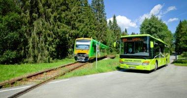 Igelbus Waldbahn